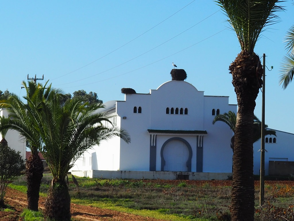 Day 83: Morocco, Moulay Bousselham – Tiflet
