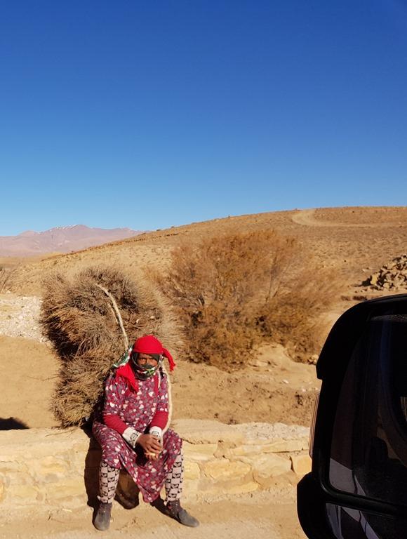 Day 115 Morocco, Tinghir – Boumalne Dades, via Todra Gorge
